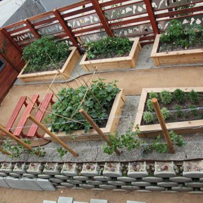 gardening_classes