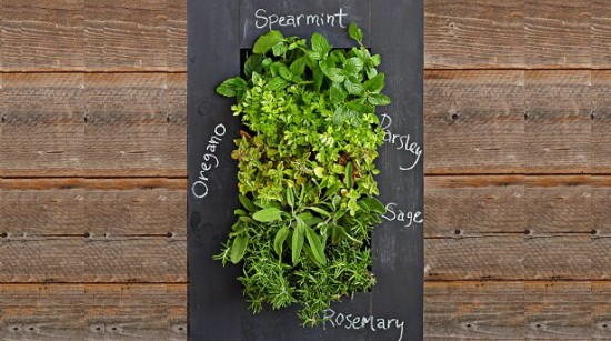 herb_wall