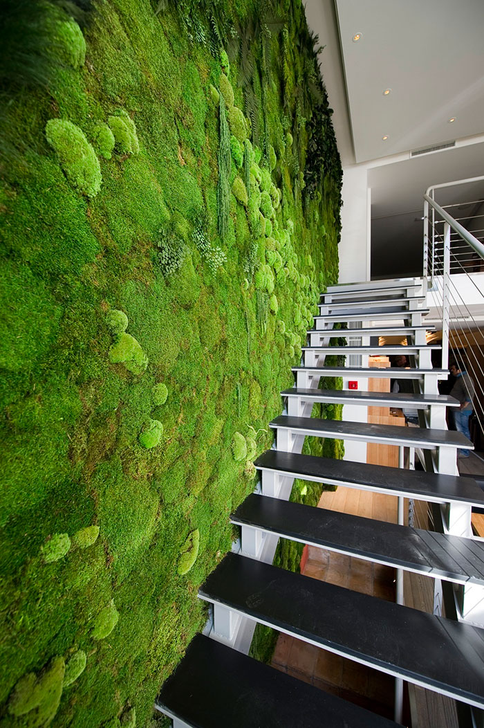 Gorgeous, Maintenance Free Moss Walls