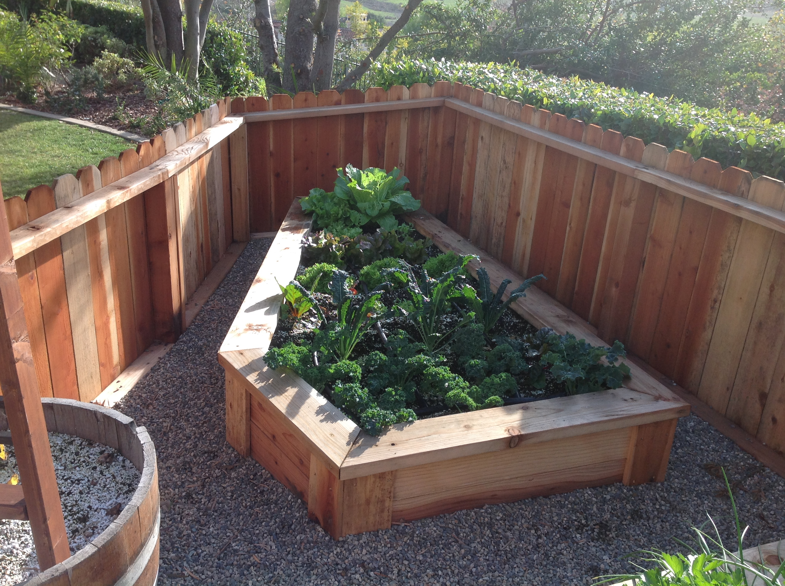 Harvest to home create the organic garden of your dreams