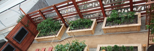 A raised bed garden featured at our showroom