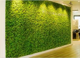 our garden design services include moss wall design