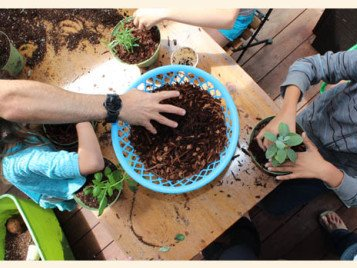 Craft & Gardening Classes